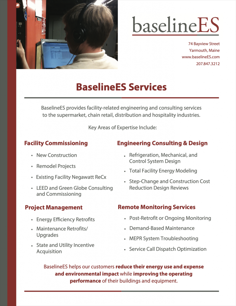 BaselineES Services Overview Brochure